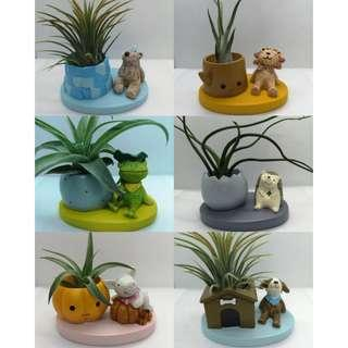 INSTOCK Animal Airplant Holder