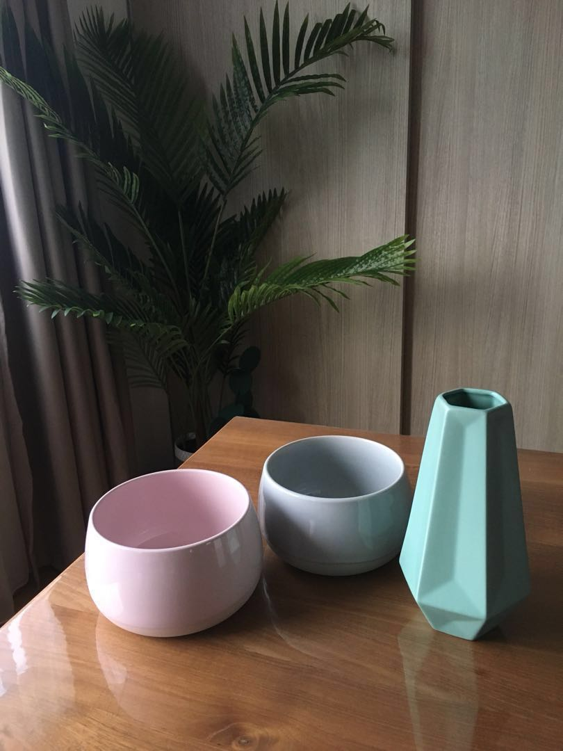 Ikea plant succulent pot and vase (lagerbar and livslang), Gardening on
