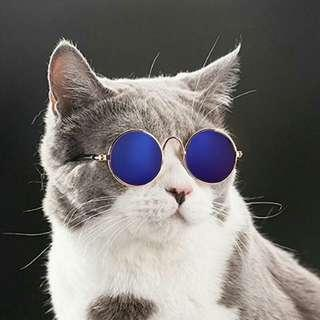 Lovely Pet eye-wear  sunglasses
