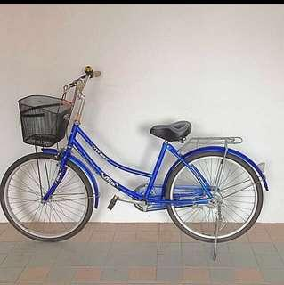 Blue Citybike (Adult / Teenager Bicycle)
