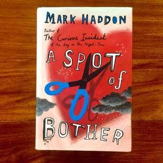 Book: Mark Haddon / A Spot of Bother