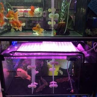 New 3ft by 1.5 by 1.5 Ios tank with delivery repost fish not included