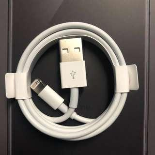 Apple Lightning Cable #MY1212