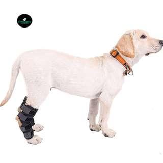 🚚 Pet Dog Cat Limb Knee Protection Rehabilitation Support Brace