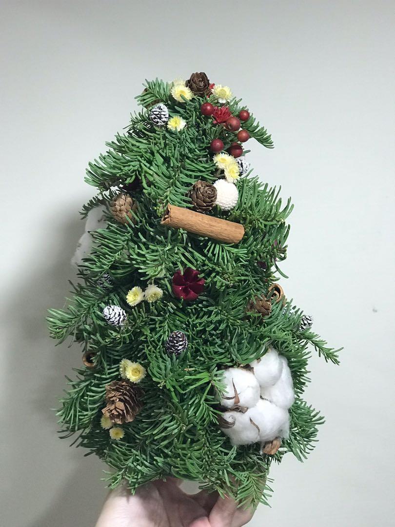 [花好玥圓]諾貝松 諾貝松聖誕樹 聖誕樹 乾燥花 乾燥花束 聖誕節 材料包 聖誕節禮物 交換禮物 桌面擺飾 拍照小物