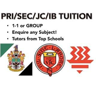 1-1 or Group Pri/Sec/JC/IB Lessons and Help