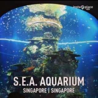 Promotion SEA Aquarium $25