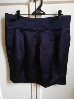 Navy Blue Skirt (brand New)