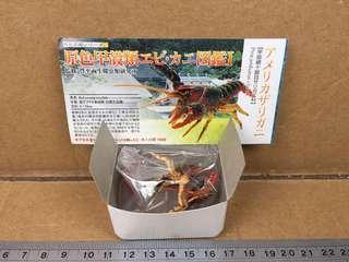 原色甲殼類圖鑑I: Red Swamp Clayfish