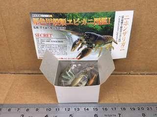 原色甲殼類圖鑑I: Japanese Clayfish