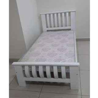 NEW S.WOOD SINGLE BED FRAME
