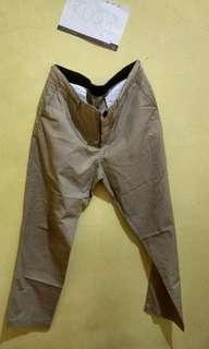 Ankle pants erigo size 34