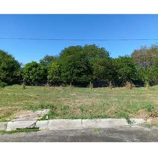 Vacant Lot for Sale in Augustine Grove Dasmarinas Cavite!