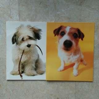 dog files 🐶