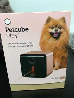 Petcube Play