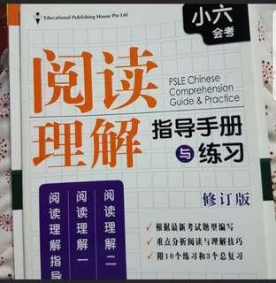 PSLE Chinese Comprehension Guide & Practice
