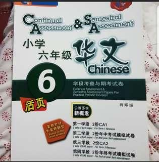 Chinese CA & SA Papers
