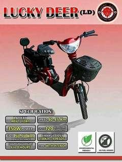 Lucky Lions (LD) ebikes