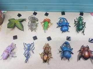 🚚 (扭蛋) 昆 蟲 世 畀
