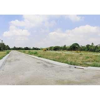 Lot for Sale in Tuy Batangas - 135sqm