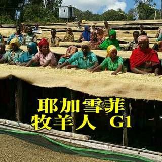 🚚 【精品莊園】耶加雪菲 科契爾 牧羊人 G1(半磅裝咖啡豆)