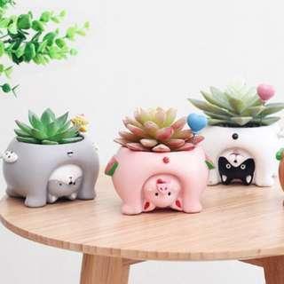 INSTOCK Peek-a-boo Animal Flower Pots