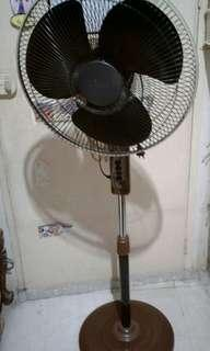 Electric standfan