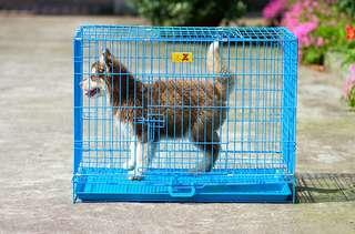 Dog cages small medium large dog cat Teddy pet with toilet puppy general folding indoor dog fighting