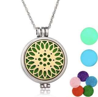 Aromatherapy Pendant Diffuser Necklace . Free Postage