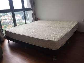 FREE Queensize bed incl. Mattress