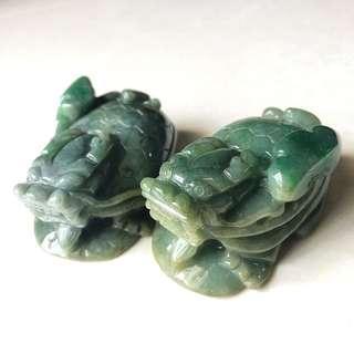 🔸 龍龜 🔸 🐉🐢🐉🐢
