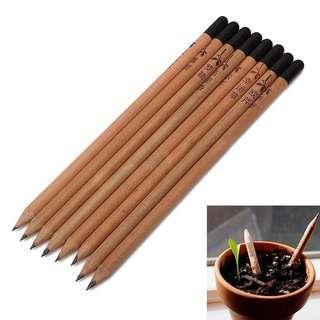 全新 多功能 種子鉛筆 教育 育兒神器 4支一組