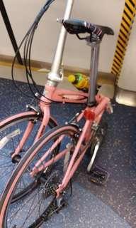OYMA經典粉紅單車