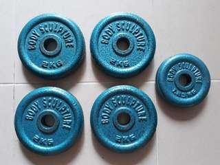 Body Sculpture weight plates