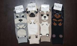 🚚 Cute Dogs Socks