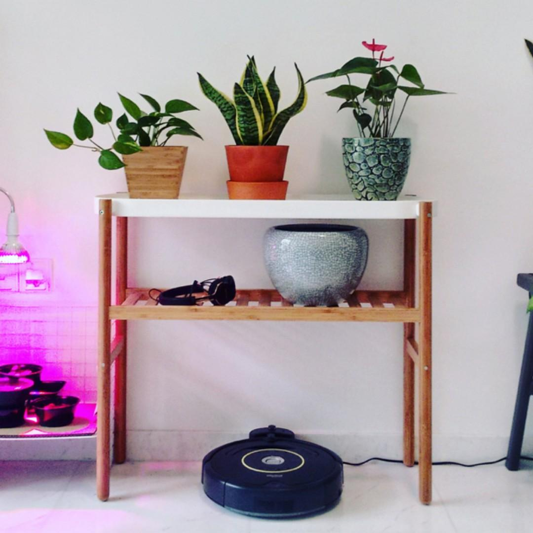 Ikea Satsumas Plant Stand Furniture Shelves Drawers On Carousell