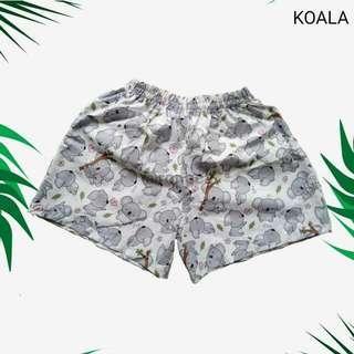 Boxer Koala