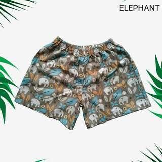 Boxer Elephant