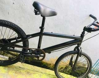 BMX (Special Customized Bike)