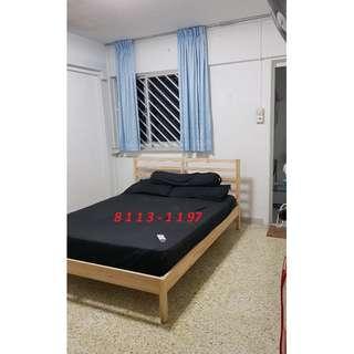 Clement 2+1 Whole Unit For Rent