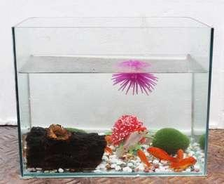 Various specifications glass fish tank