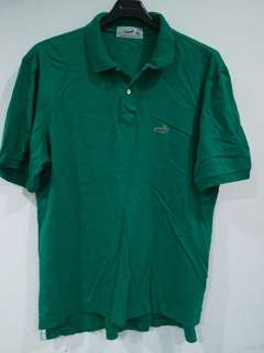 Crocodile polo衫 綠色LL碼