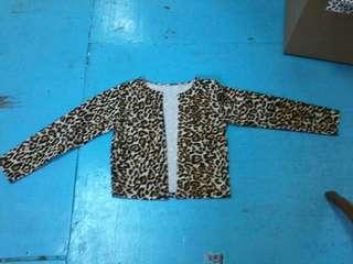 Leopard office bolero