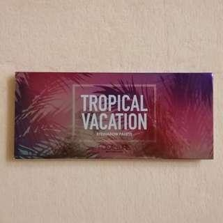 CHRISTMAS SALE!!! FOCALLURE Tropical Vacation Palette