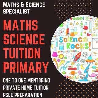Maths Science Tuition | Primary School Maths Science Tutor | Tutor Maths Science PSLE | Looking for Experienced Home Tutor | MOE Teacher | Tuition Teacher | Tutor needed | Private Tutor for Primary | One to One Tuition | Foundation Science Tuition | AEIS