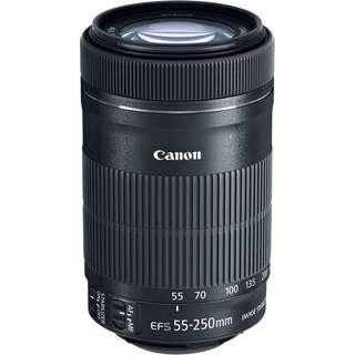 Canon 55-250 mm telephoto lens