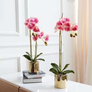 🚚 PO Faux Artificial White/Pink Silk Orchids Pot Set