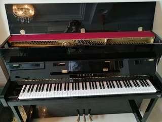Yamaha Piano Silent Piano