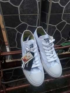Converse undefeated white