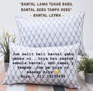 Pillow hotel (leyna)